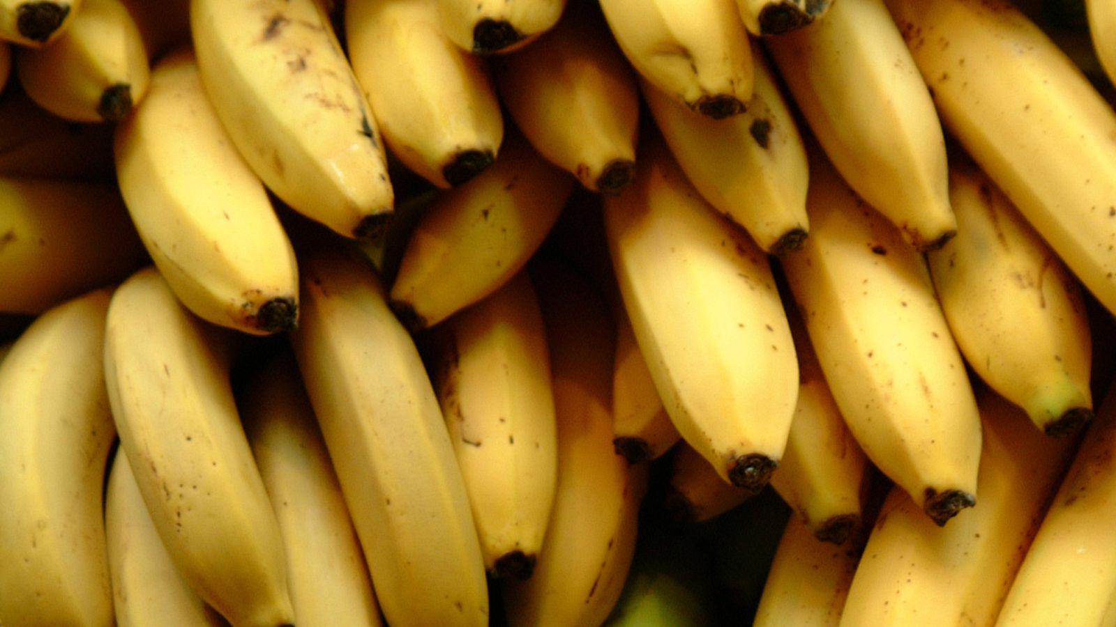 ian-ransley-flickr-bananas-crop
