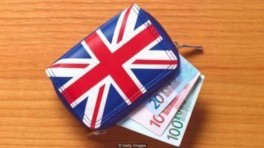 brexit wallet